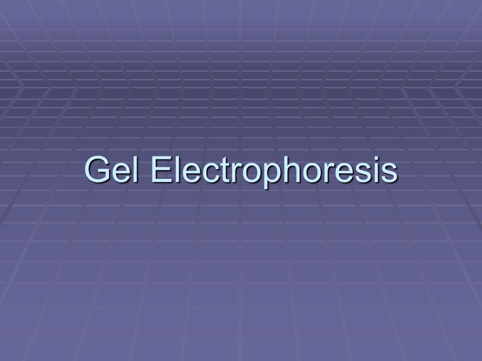 Electrophoresis  Used to separate and/or purify macromolecules  Commonly used for protein and nucleic acid separations  Separates molecules base on size, charge, or conformation using an electric field