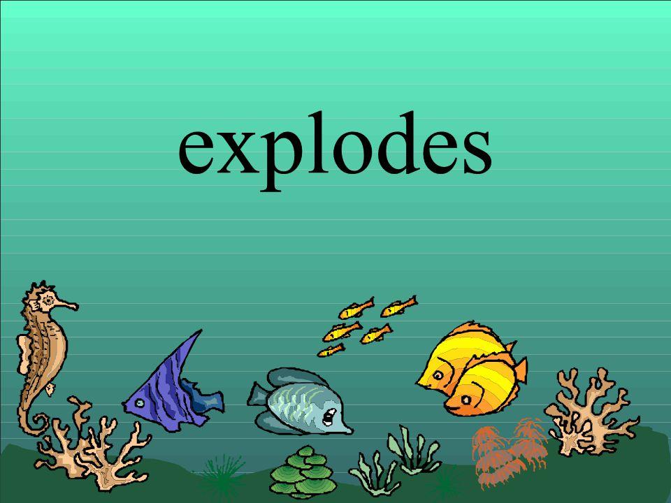 explodes