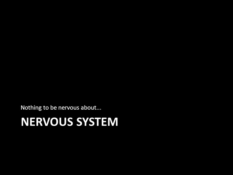 NERVOUS SYSTEM Nothing to be nervous about...