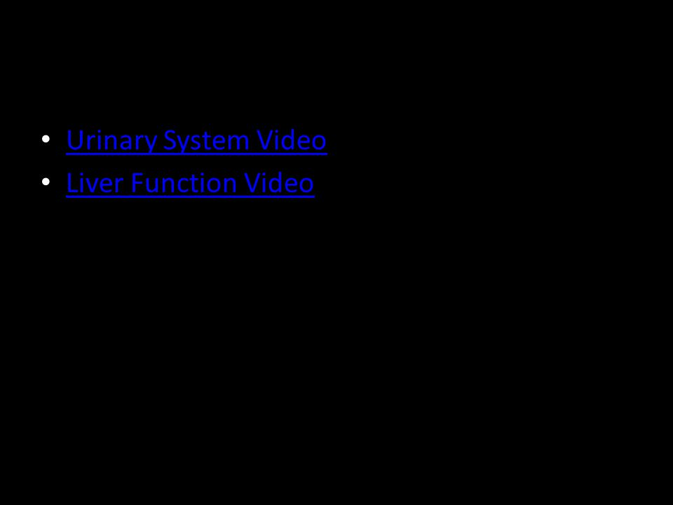 Urinary System Video Liver Function Video
