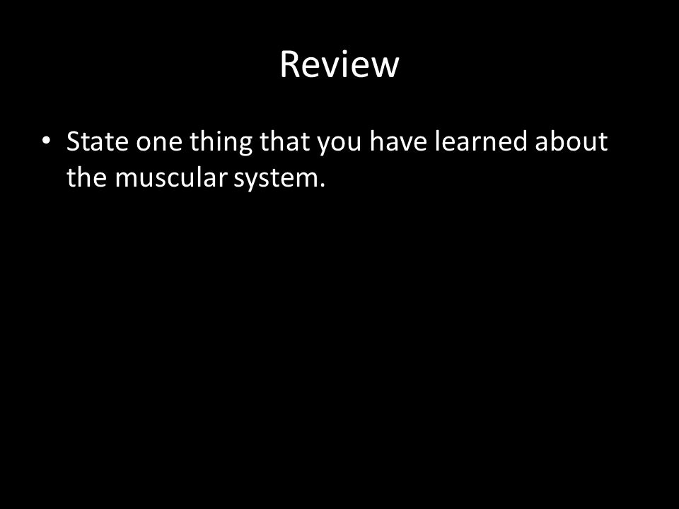 Review State one thing that you have learned about the muscular system.