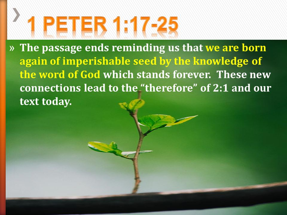 » 1 Peter 2:9-12 – Be Attractive as God's people who are aliens and strangers in this world.