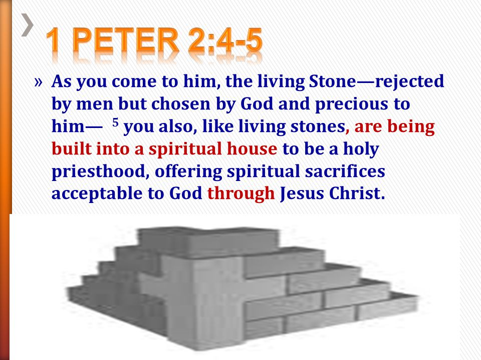 » 6 For in Scripture it says: See, I lay a stone in Zion, a chosen and precious cornerstone, and the one who trusts in him will never be put to shame.
