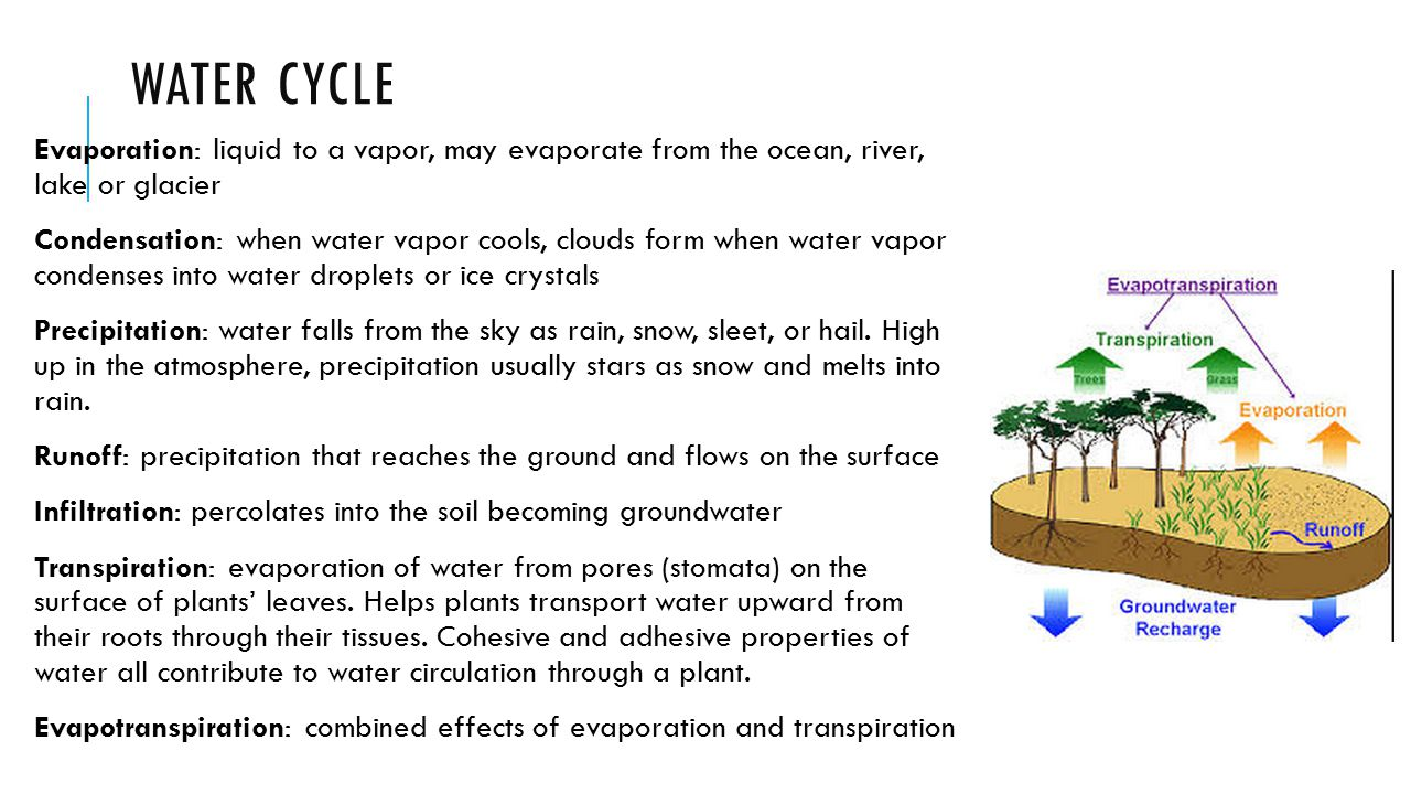 WATER CYCLE Evaporation: liquid to a vapor, may evaporate from the ocean, river, lake or glacier Condensation: when water vapor cools, clouds form whe