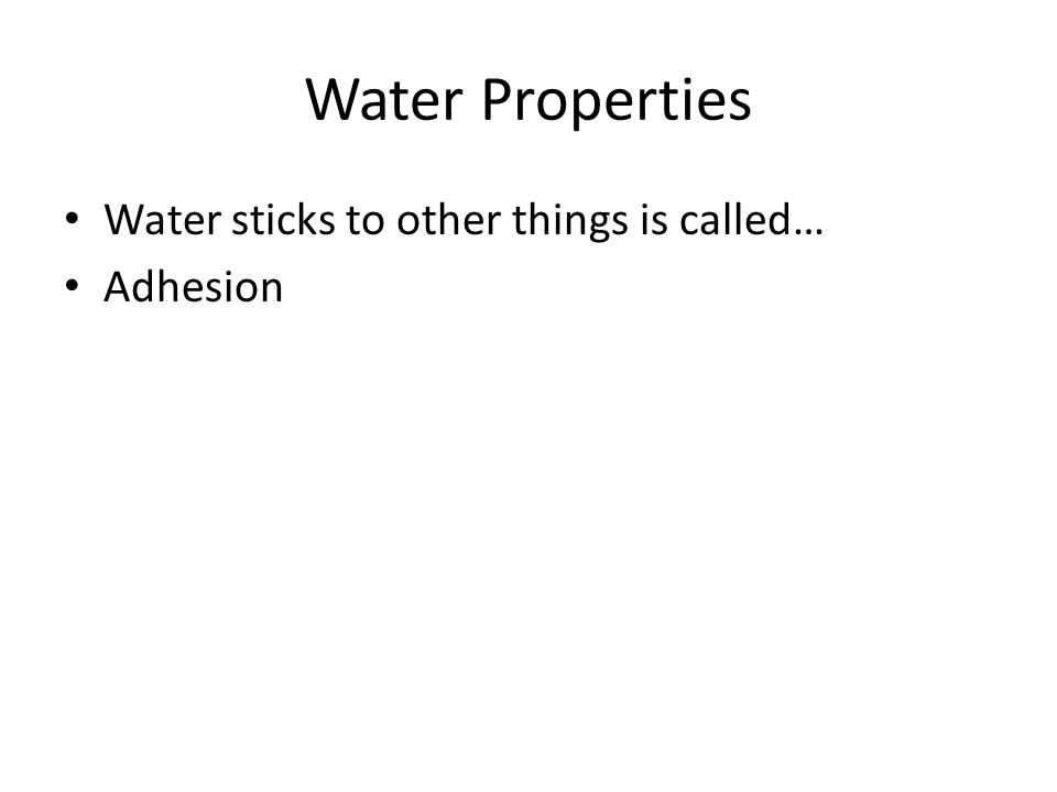 Water Properties Water sticks to other things is called… Adhesion