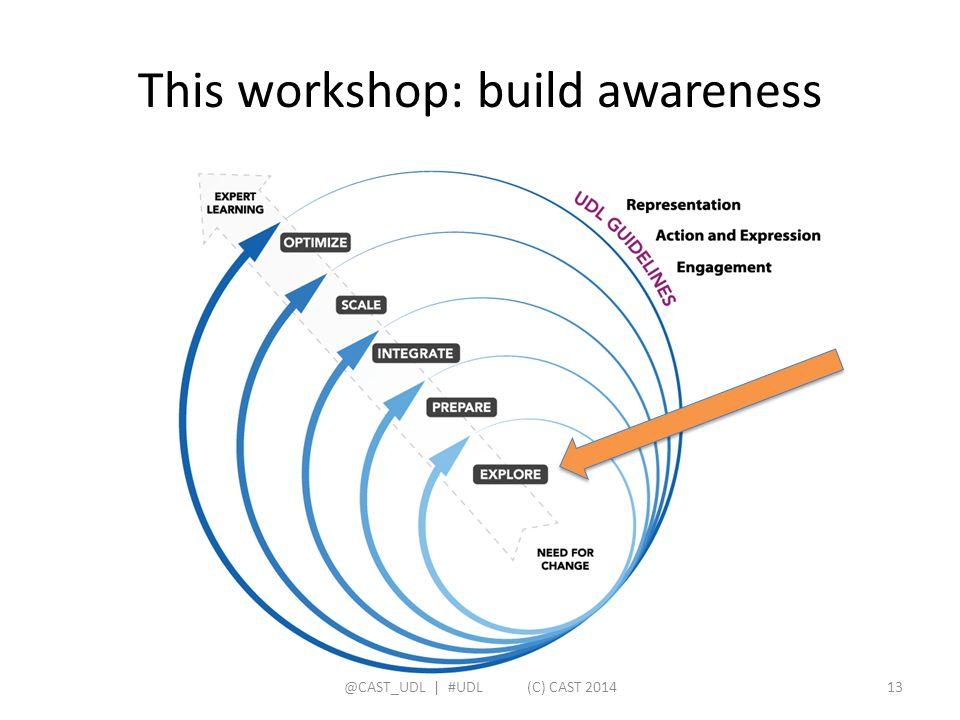 This workshop: build awareness @CAST_UDL   #UDL (C) CAST 201413