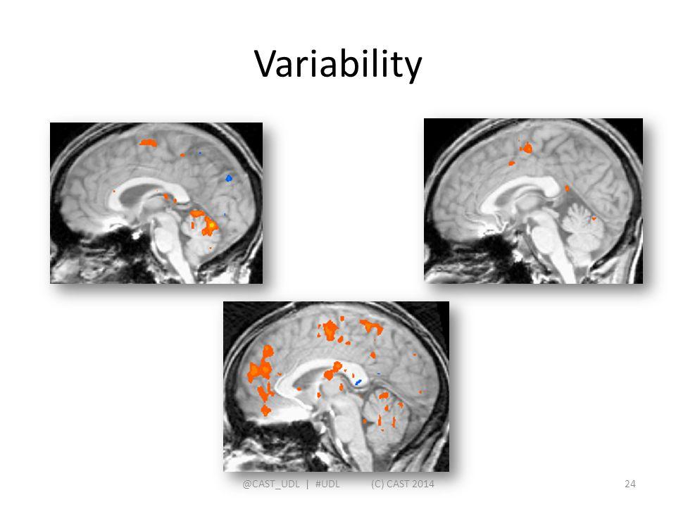 Variability @CAST_UDL   #UDL (C) CAST 201424