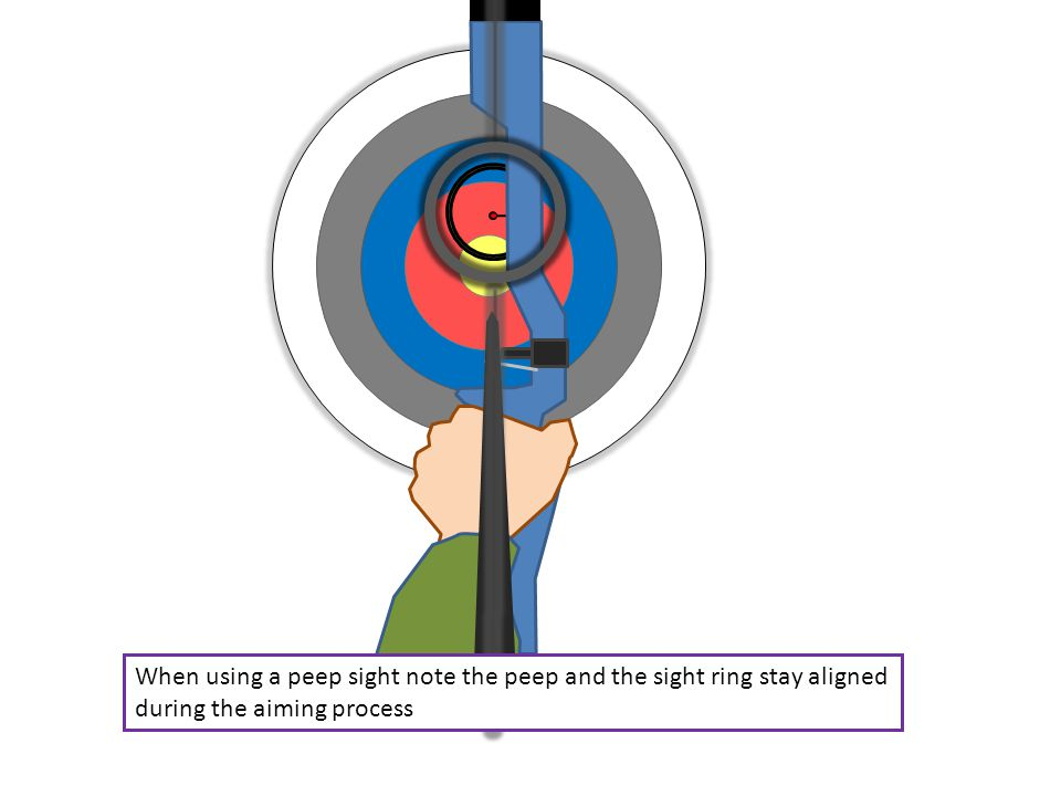 When using a peep sight note the peep and the sight ring stay aligned during the aiming process