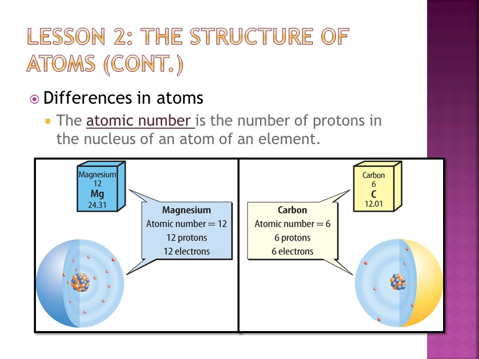  The size of atoms  Every solid, liquid, and gas is made of millions and millions of atoms.