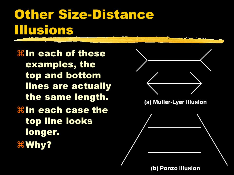 Other Size-Distance Illusions zIn each of these examples, the top and bottom lines are actually the same length.