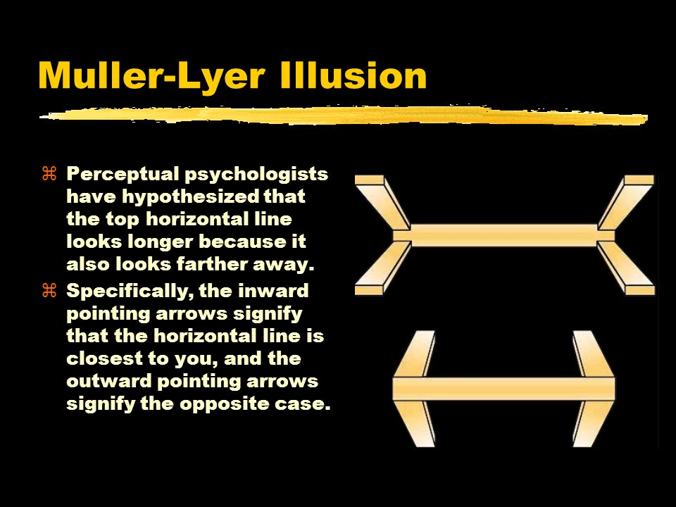 Muller-Lyer Illusion zPerceptual psychologists have hypothesized that the top horizontal line looks longer because it also looks farther away.