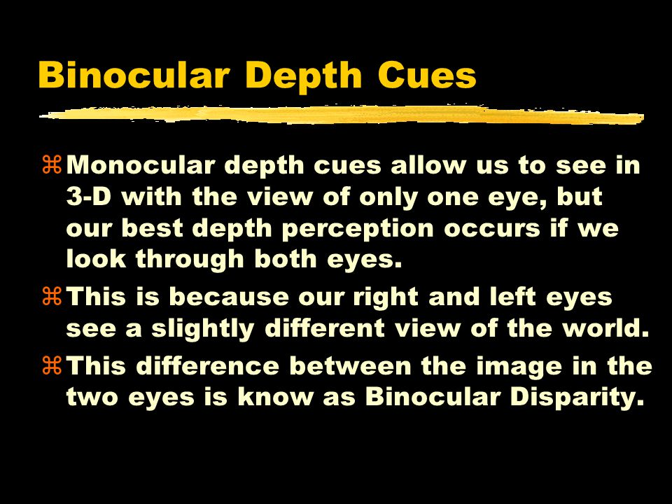 Binocular Depth Cues zMonocular depth cues allow us to see in 3-D with the view of only one eye, but our best depth perception occurs if we look through both eyes.