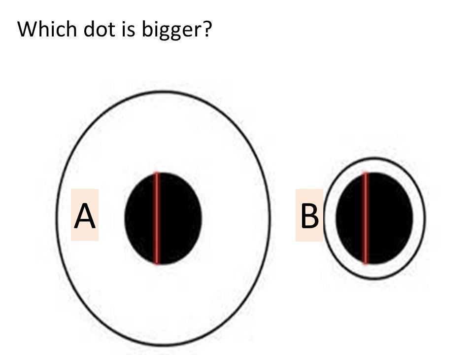 Which dot is bigger? A B
