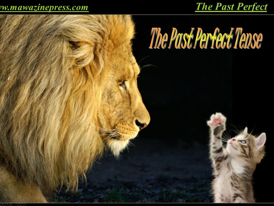 www.mawazinepress.com The Past Perfect The Past Perfect