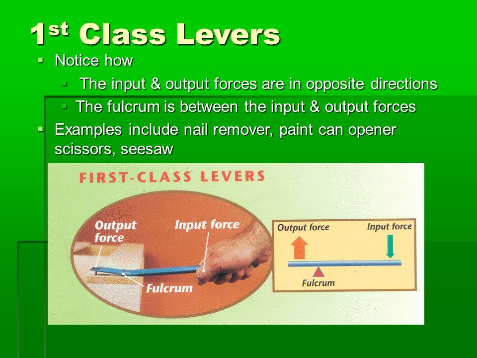 1 st Class Levers  Notice how  The input & output forces are in opposite directions  The fulcrum is between the input & output forces  Examples include nail remover, paint can opener scissors, seesaw