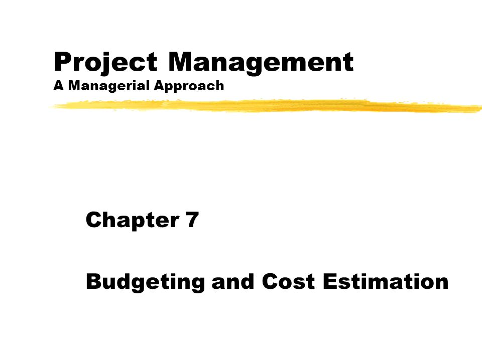 Project Management A Managerial Approach Chapter 7 Budgeting and Cost Estimation