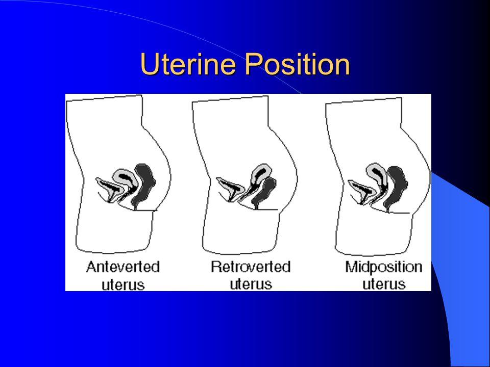 Uterine Position