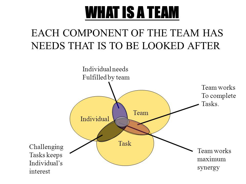 WHAT IS A TEAM Task Team Individual EACH COMPONENT OF THE TEAM HAS NEEDS THAT IS TO BE LOOKED AFTER Team works To complete Tasks.