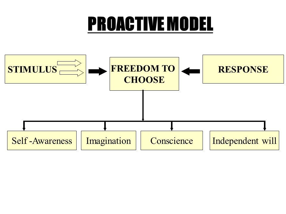 PROACTIVE MODEL STIMULUS FREEDOM TO CHOOSE RESPONSE Self -AwarenessImaginationConscienceIndependent will