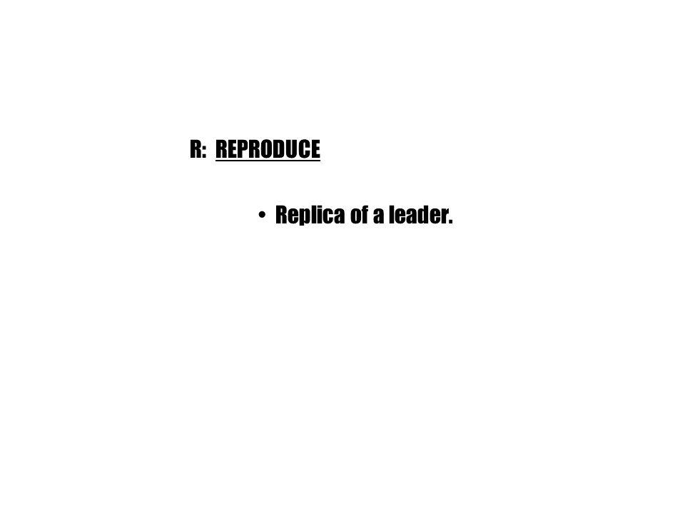 R: REPRODUCE Replica of a leader.