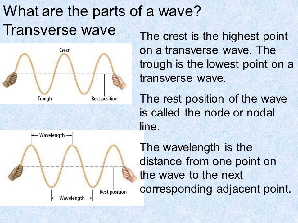 What are the parts of a wave. Transverse wave The crest is the highest point on a transverse wave.