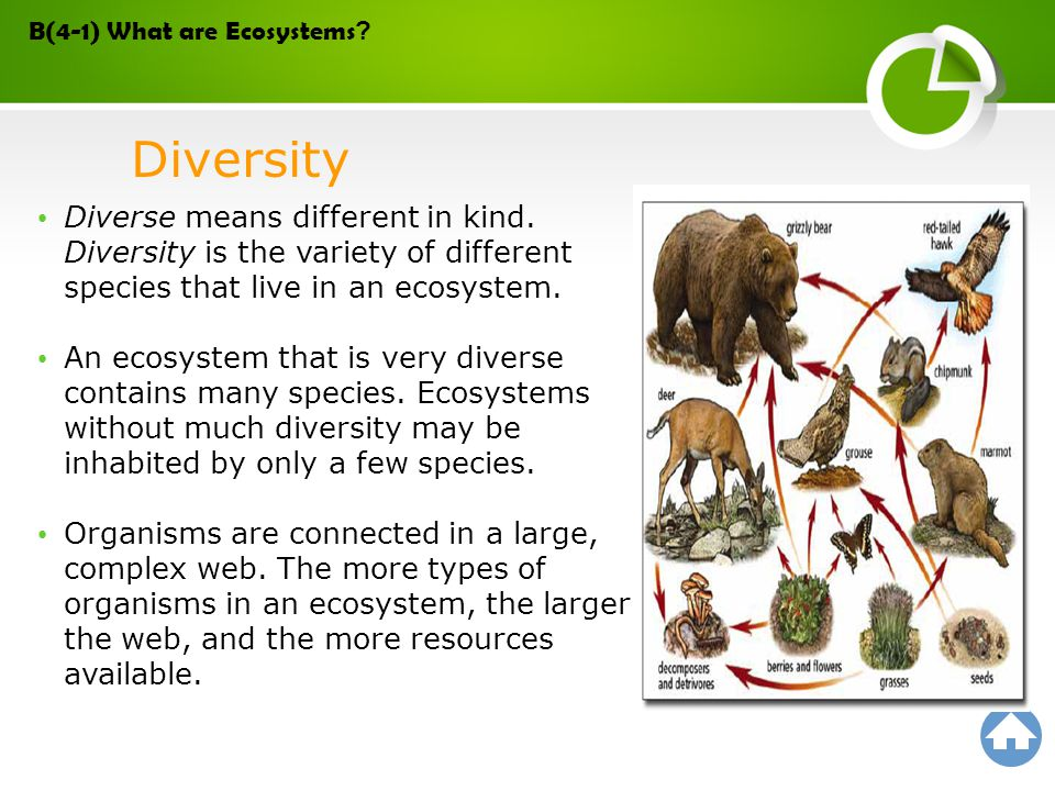 Diverse means different in kind. Diversity is the variety of different species that live in an ecosystem. An ecosystem that is very diverse contains m