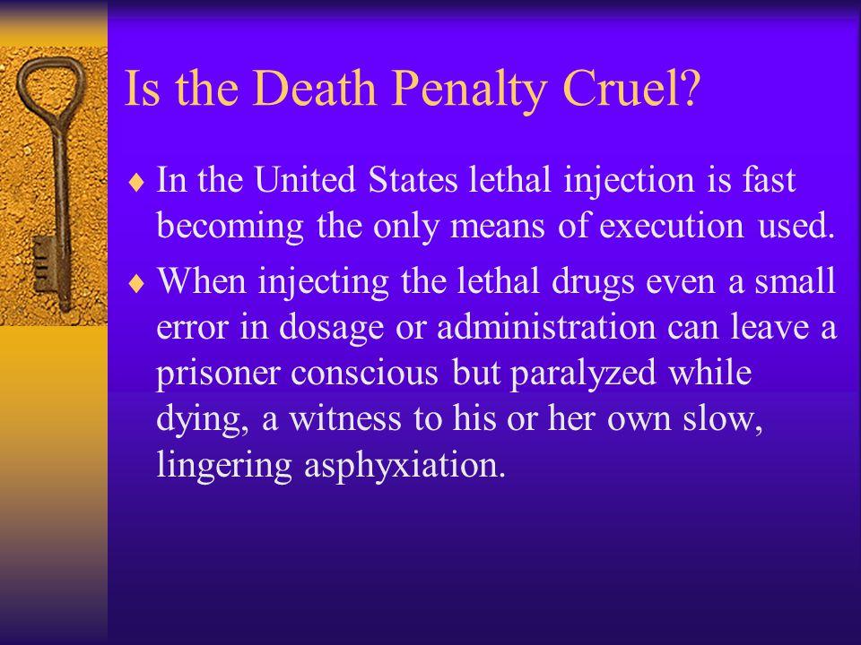 Is the Death Penalty Cruel.
