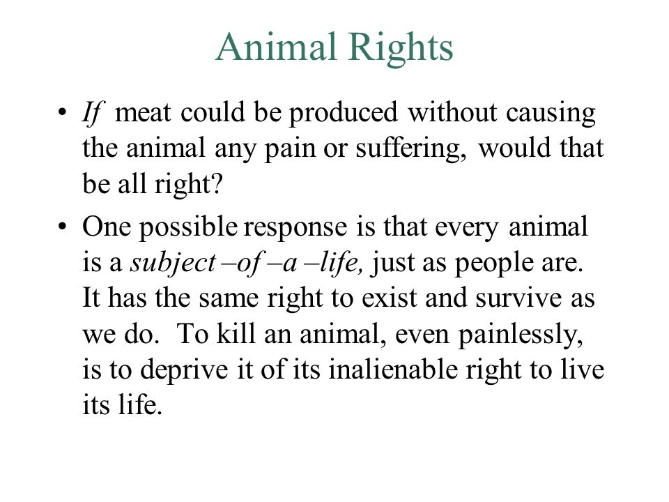 Animal Rights If meat could be produced without causing the animal any pain or suffering, would that be all right.