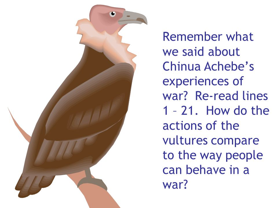 Remember what we said about Chinua Achebe's experiences of war? Re-read lines 1 – 21. How do the actions of the vultures compare to the way people can