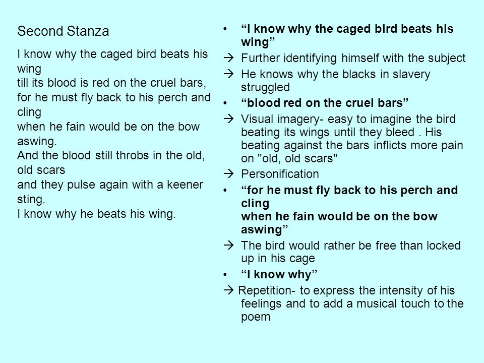 """""""I know why the caged bird beats his wing""""  Further identifying himself with the subject  He knows why the blacks in slavery struggled """"blood red on"""