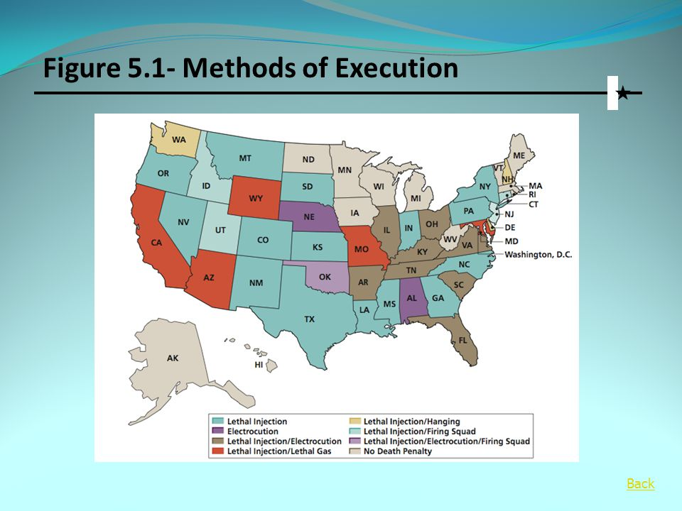 Figure 5.1- Methods of Execution  Back