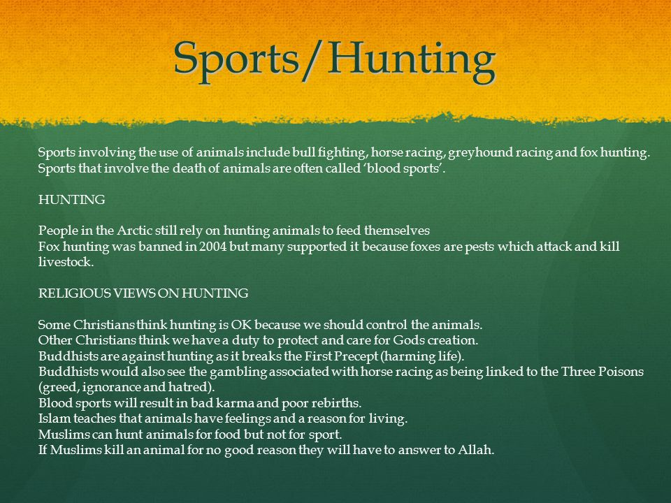 Sports/Hunting Sports involving the use of animals include bull fighting, horse racing, greyhound racing and fox hunting. Sports that involve the deat