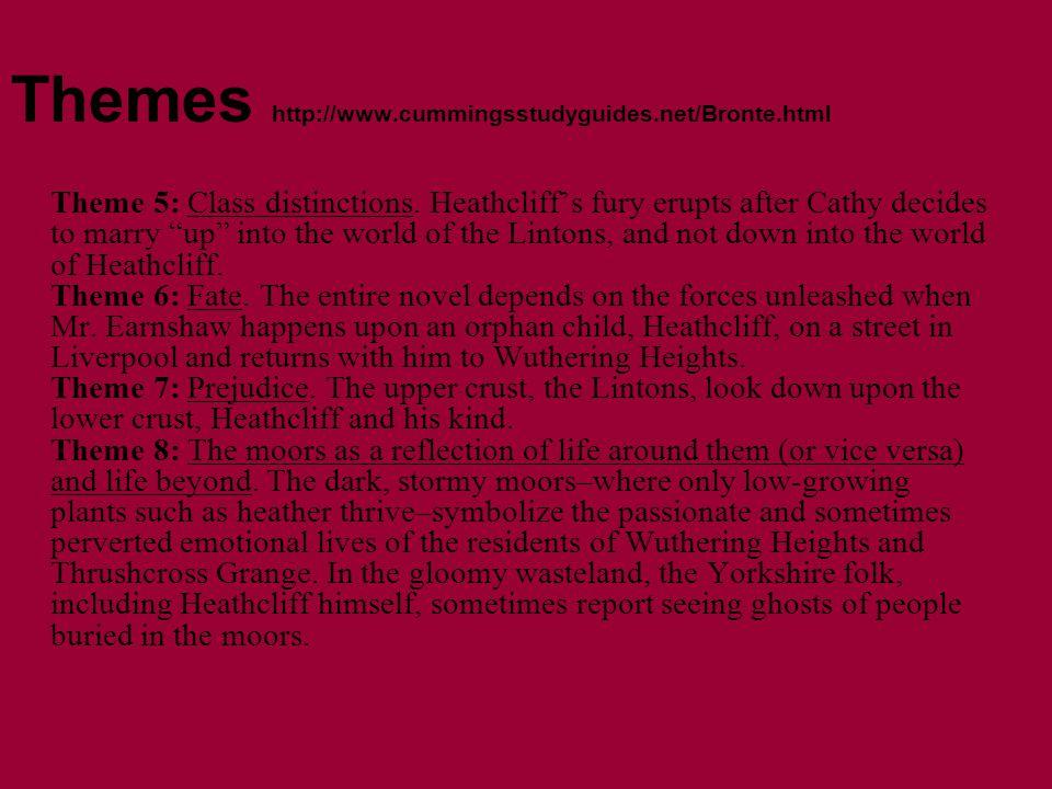 Themes http://www.cummingsstudyguides.net/Bronte.html Theme 5: Class distinctions.