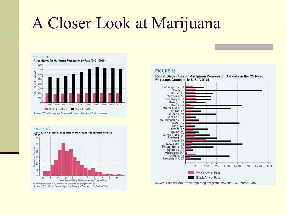 A Closer Look at Marijuana