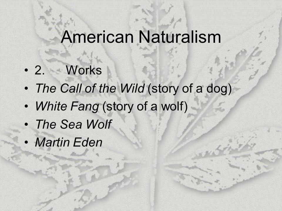 American Naturalism 2.