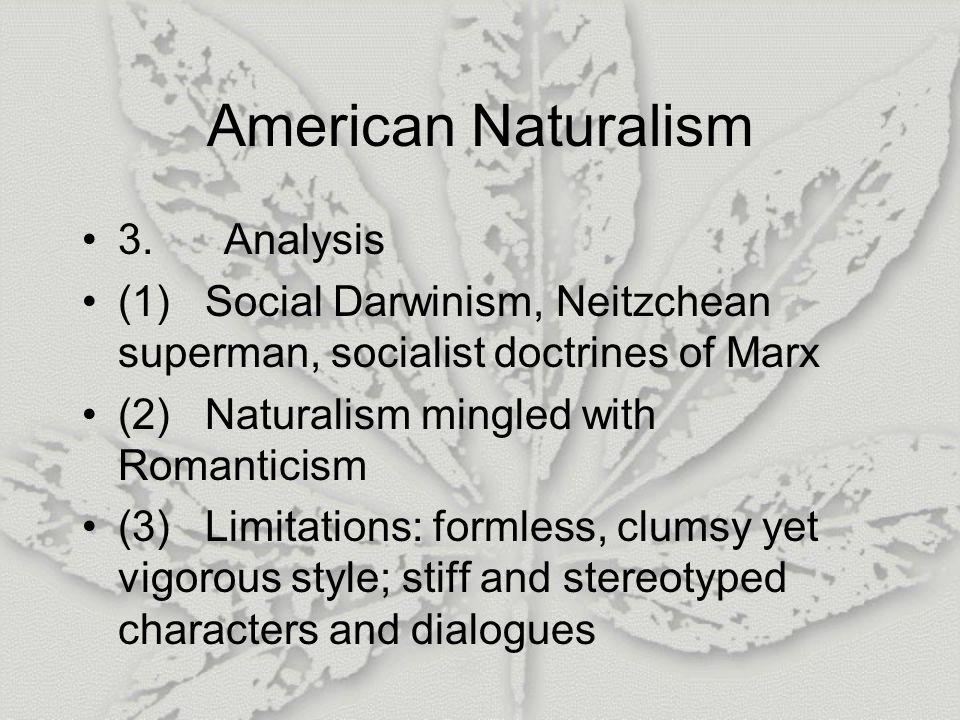 American Naturalism 3.