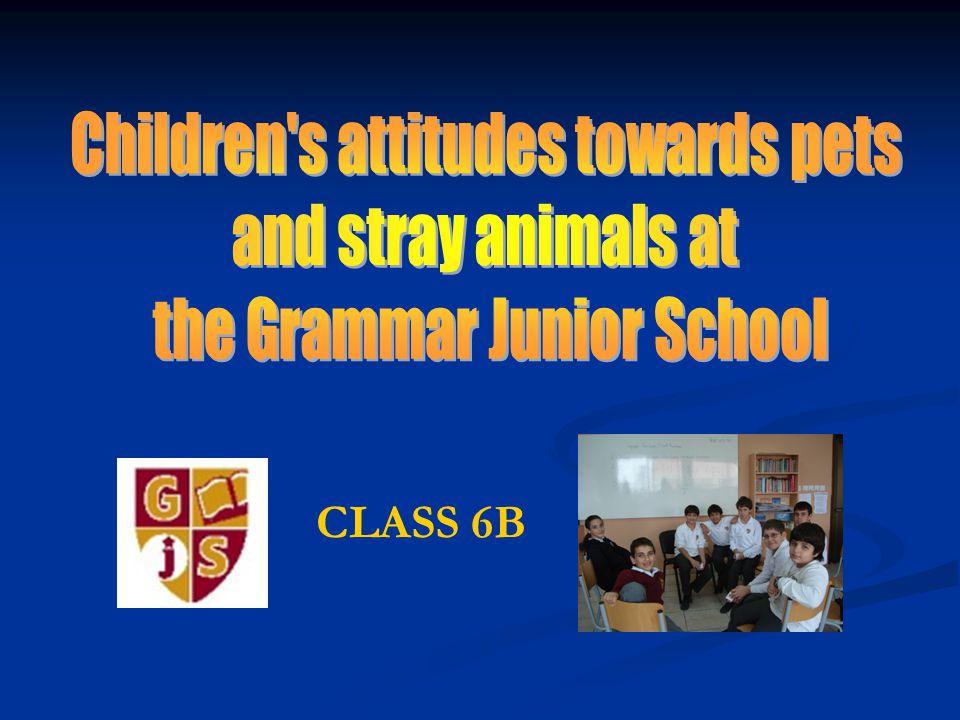 12The Grammar Junior School Question 8: Animals should have rights.