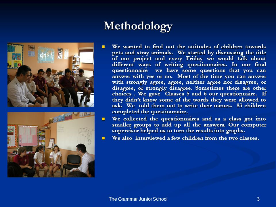 3The Grammar Junior School Methodology We wanted to find out the attitudes of children towards pets and stray animals.