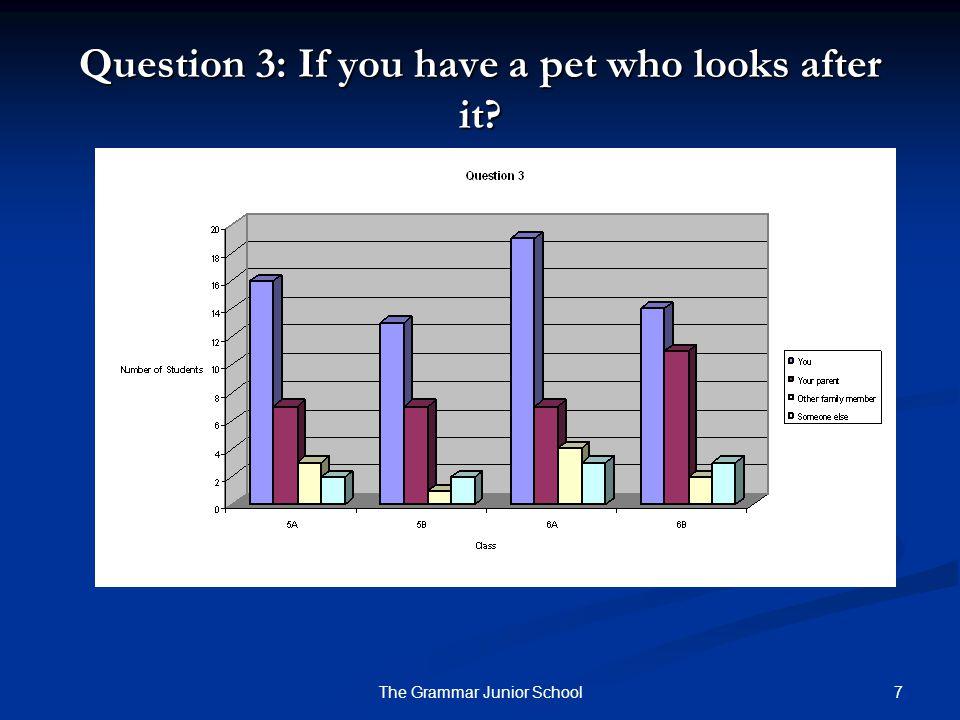 18The Grammar Junior School Most children's favourite pet is a dog.
