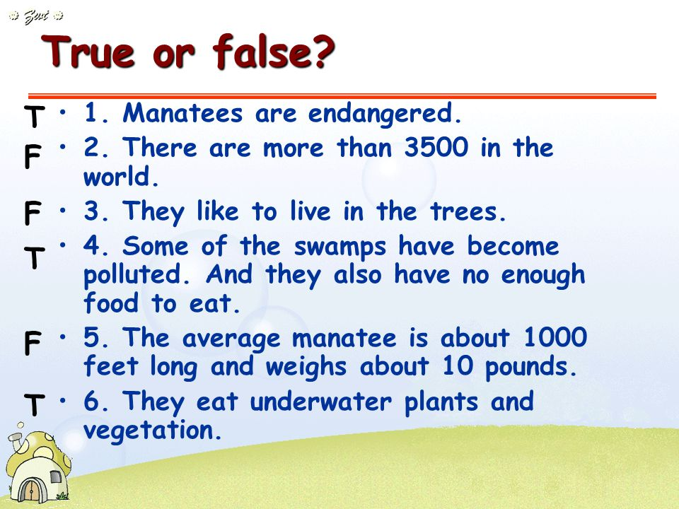 Kind of animal Manatee Numbers_____ in the U.S.