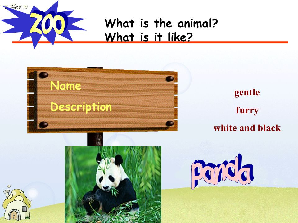 Name Description gentle furry white and black What is the animal? What is it like?