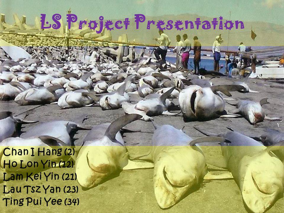 LS Project Presentation Chan I Hang (2) Ho Lon Yin (12) Lam Kei Yin (21) Lau Tsz Yan (23) Ting Pui Yee (34)
