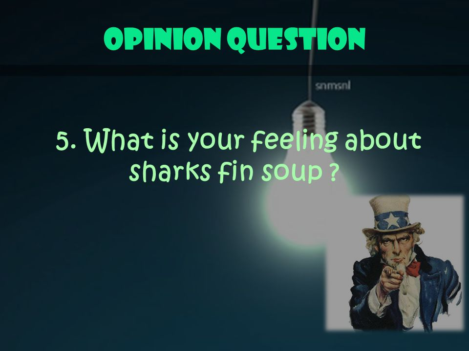 Opinion Question 5. What is your feeling about sharks fin soup