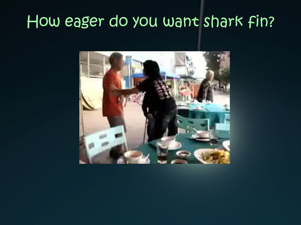 How eager do you want shark fin