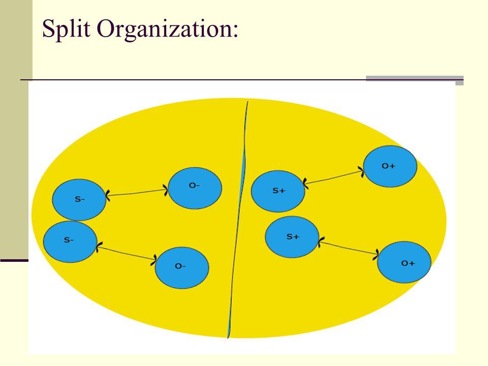 Split Organization: