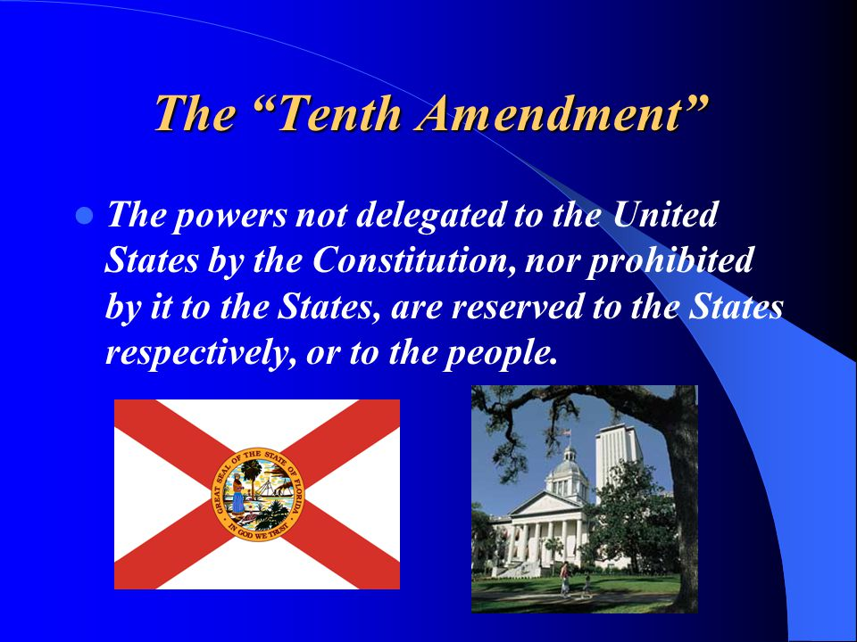 """The """"Tenth Amendment"""" The powers not delegated to the United States by the Constitution, nor prohibited by it to the States, are reserved to the State"""