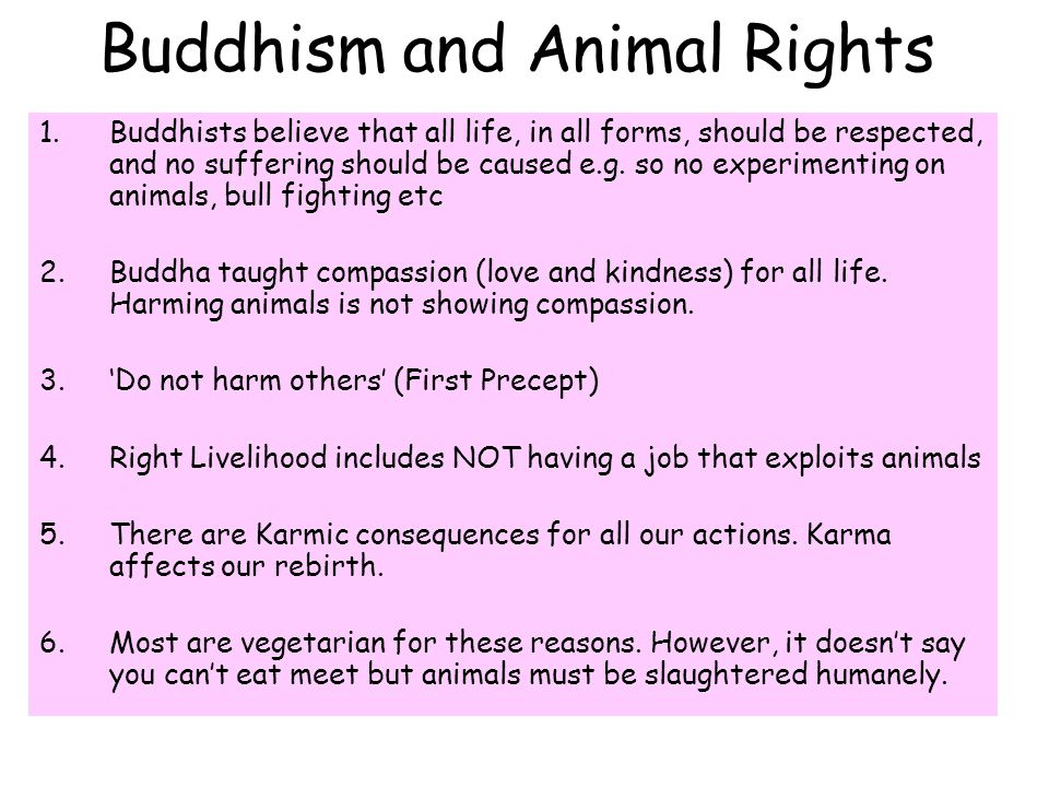 1.Buddhists believe that all life, in all forms, should be respected, and no suffering should be caused e.g.