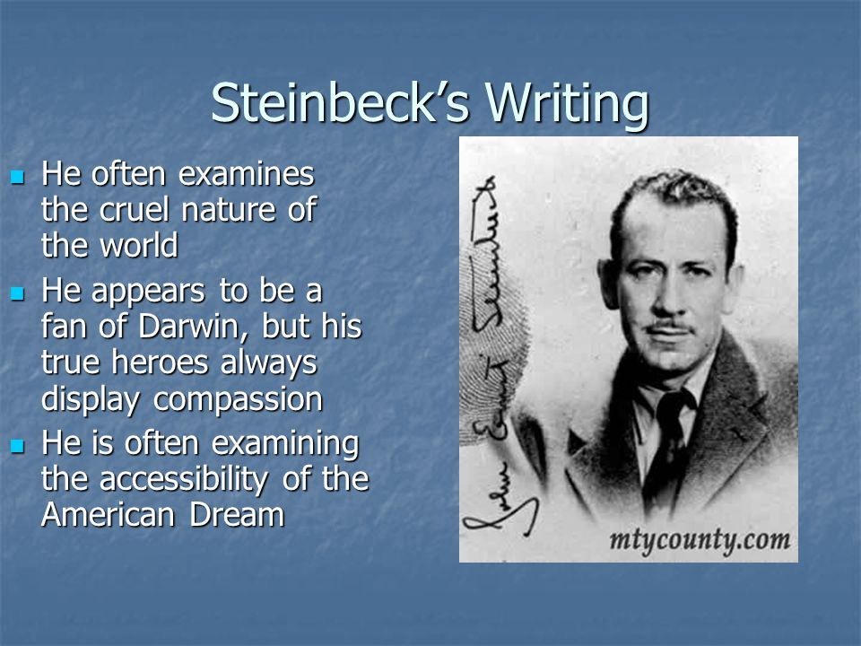 Steinbeck's Writing He often examines the cruel nature of the world He often examines the cruel nature of the world He appears to be a fan of Darwin,