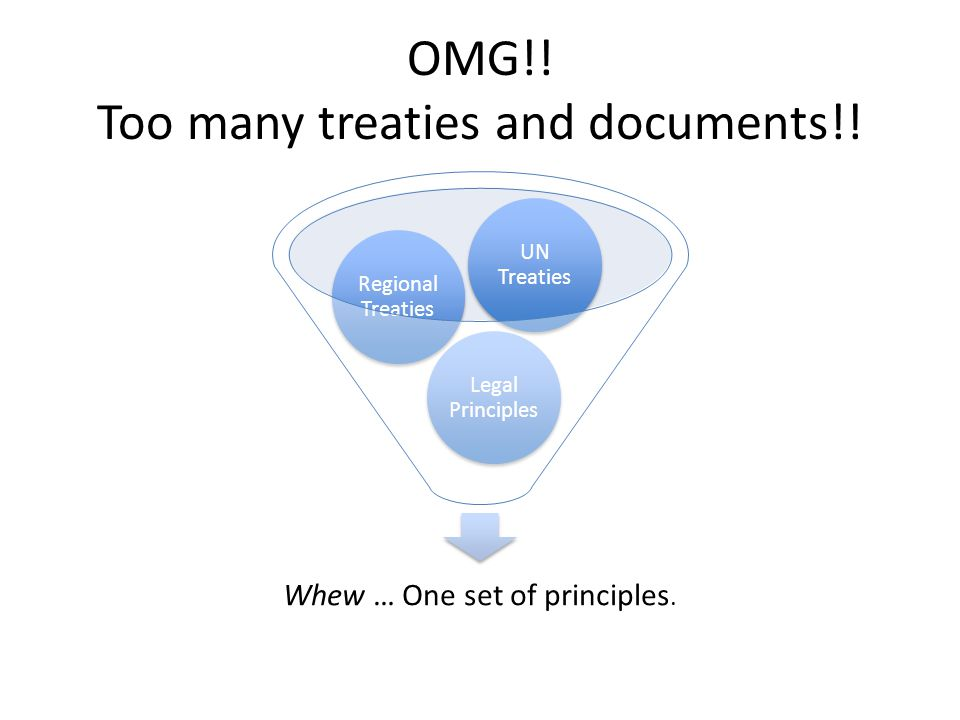 OMG!. Too many treaties and documents!. Whew … One set of principles.