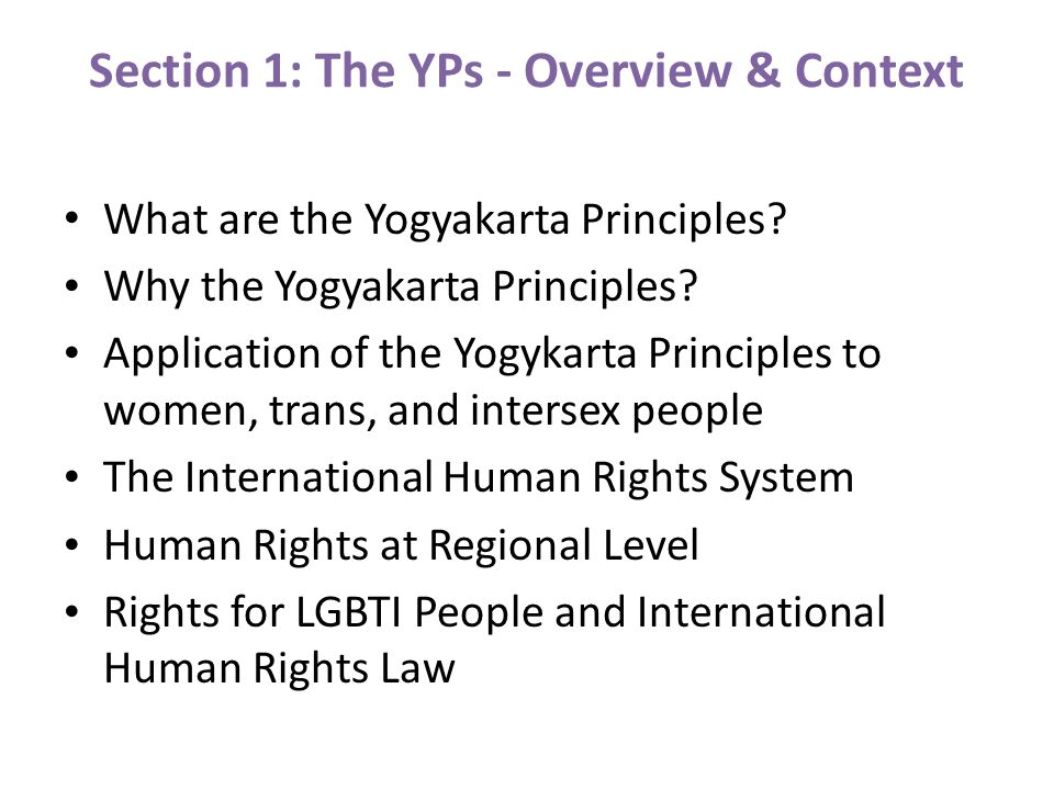 Section 1: The YPs - Overview & Context What are the Yogyakarta Principles.